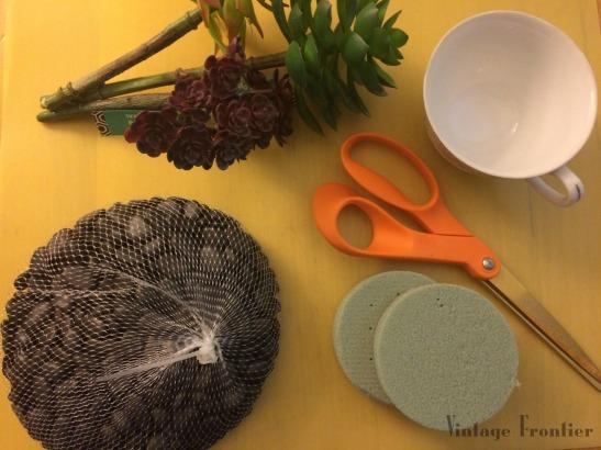 Tea Cup Succulents DIY