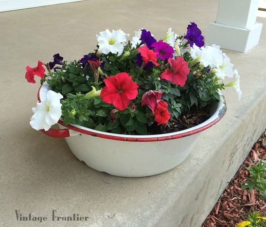 What a fun way to add some color to your patio or garden, with this antique enamelware flower pot.
