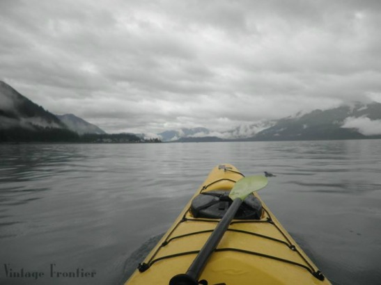 The most amazing experience I have ever had was Kayaking in Resurrection Bay in Alaska.